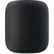 Apple HomePod schwarz (MQHW2D/A)